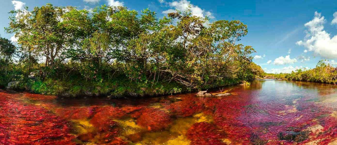 cano_cristales_tourism_colombia