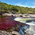 cano_cristales_macarena_tourism_colombia