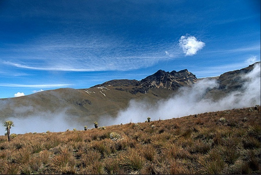los_nevados_national_natural_park_colombia4