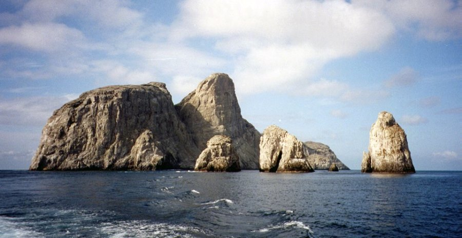 malpelo_sanctuary_tourism_colombia1