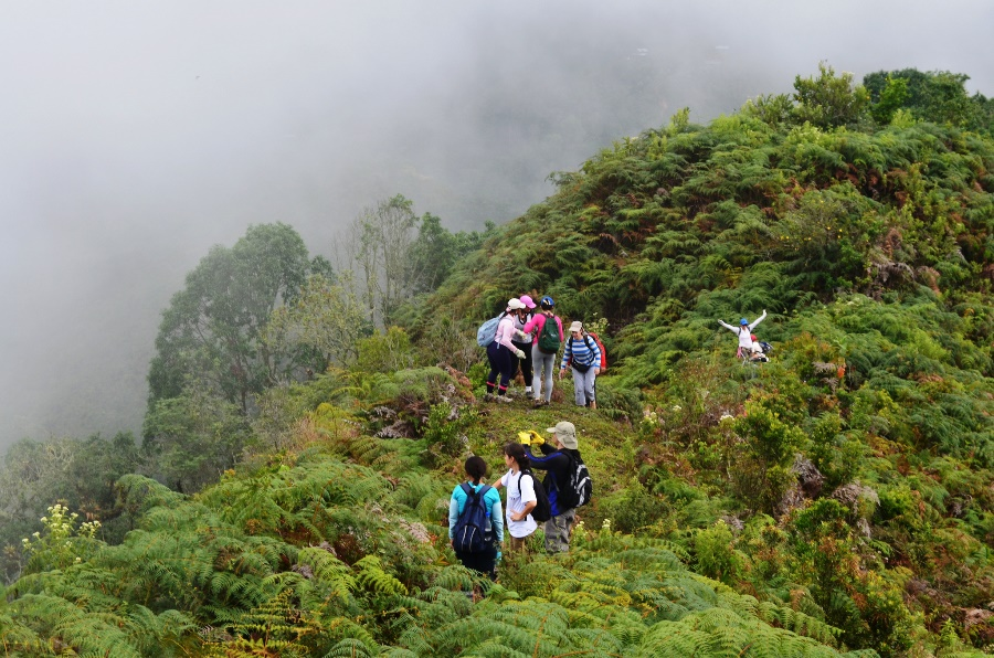 trail to Alto Trueno - The Farallones de Cali National Natural Park