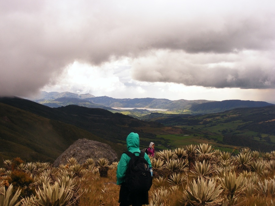 Chingaza National Park is located in the Eastern Cordillera of the Andes, northeast of Bogotá