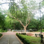 monteria_attractions_tourist_cordoba_travel_colombia