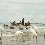 cartagena_ecoturismo_colombia_travel