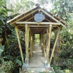 ibague_jardin_botanico_san_jorge_colombia_travel